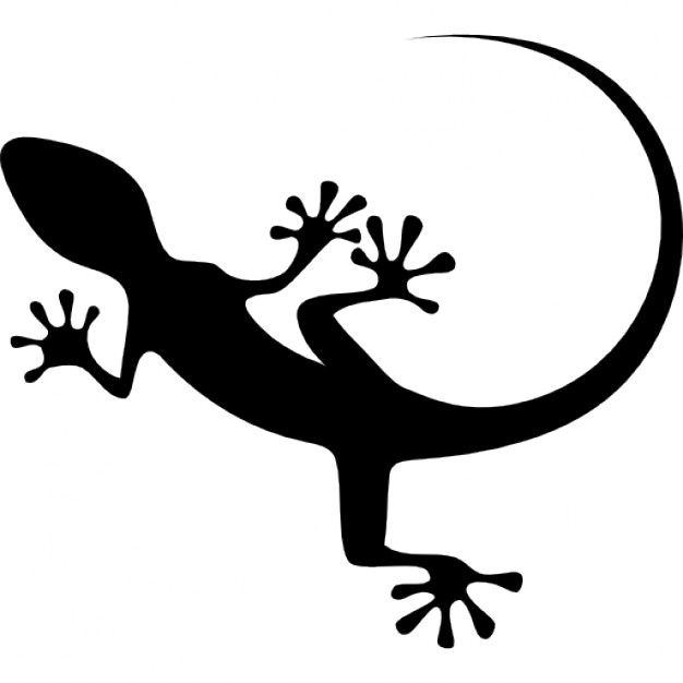 Gecko Vectors, Photos and PSD files | Free Download
