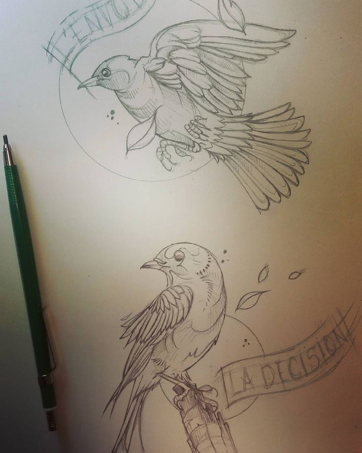 L'envol et la decision. The take off and the decision. An idea I had each person who will choose one from this project will have a bond with another person he/she doesnt know. A tatt from the same collection. #birds #nature #tattoo #art #artist #tattoing #drawing #orioles #common #eastern #illustration #doodle #doodling #dessin #tatuaje #tatouage #illustrate #sketch #sketching #lyon #france