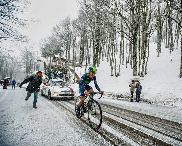 """1,236 Likes, 3 Comments - Italian Cycling Brand (@strong_cycling) on Instagram: """"Una parata di stelle attende dal 7 al 13 marzo la #TirrenoAdriatico 2018! Al via ci saranno 154…"""""""