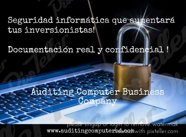 Auditing Computer Business Company