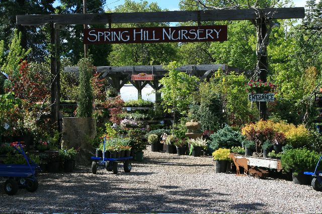 Best 25 plant nursery ideas on pinterest garden shop for Spring hill nursery garden designs