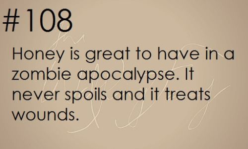 Zombie Apocalypse Survival Tip #108                                                                                                                                                                                 More