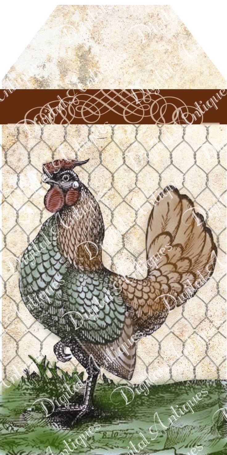 Charming Vintage Chicken Tags Printable Digital Download.