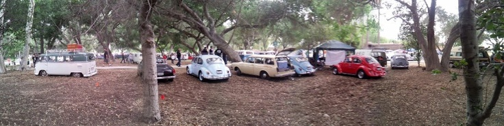 2013 VW Spring Picnic, Our group.