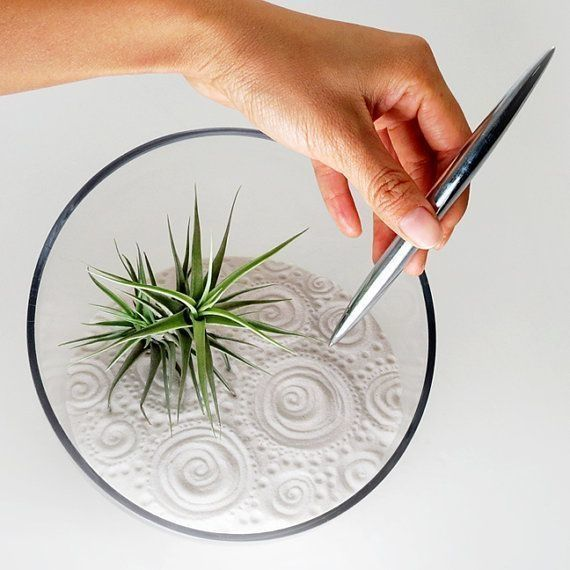 An air plant zen garden is a great thing to keep on your coffee or bedside table, as it offers a short distraction that helps one unwind.