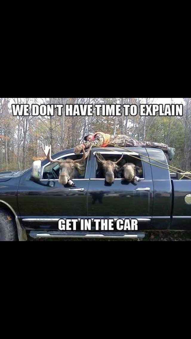 25 Best Funny Hunting Quotes On Pinterest Deer Hunting