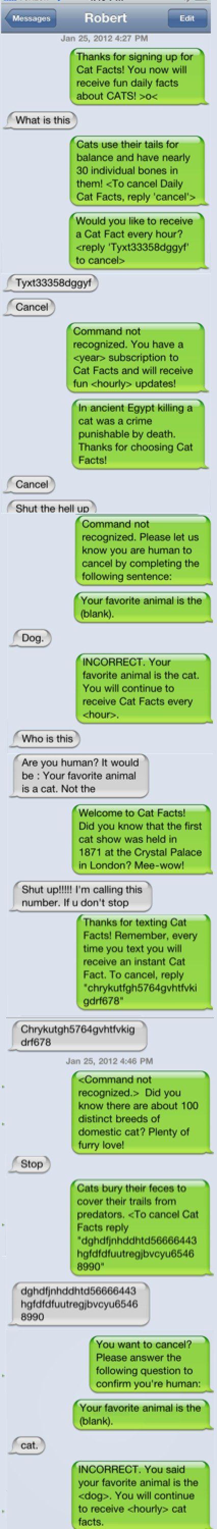 would you like to receive a cat fact every hour?