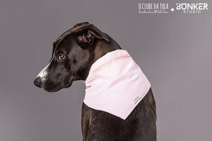 "Pañuelo para perros ""Romantic"" Vichy Rosa, cinta Tricot/velvet, 100% algodón. Romántico a más no poder, en O Clube da Tula... http://oclubedatula.com/es/produtos/item/panuelo-romantic-vichy-rosa-cinta-tricotvelvet/"