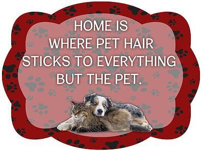 Home Is Where Pet Hair Sticks To Everything But The Pet Door Hanger – Shut The Front Door by Unique Textile Printing