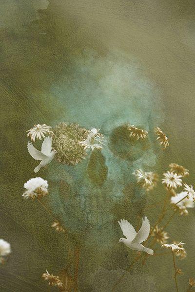 DIGITAL PAINTING of SKULL FLOWERS 🛒 FOR SALE from 109,99$ 💶💵💷 PRINT: aluminium plate, acrylic glass, photo canvas IG: @michalpetrik_art #art #interiordesign #artist #slovakartist #digitalart #instaart #painting #digitalpainting #modern #gallery #artprint #decor #print #slovakia  #skull #artskull #modernart