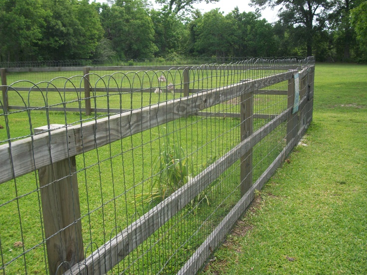 Best woven wire ornamental loop fences gates images