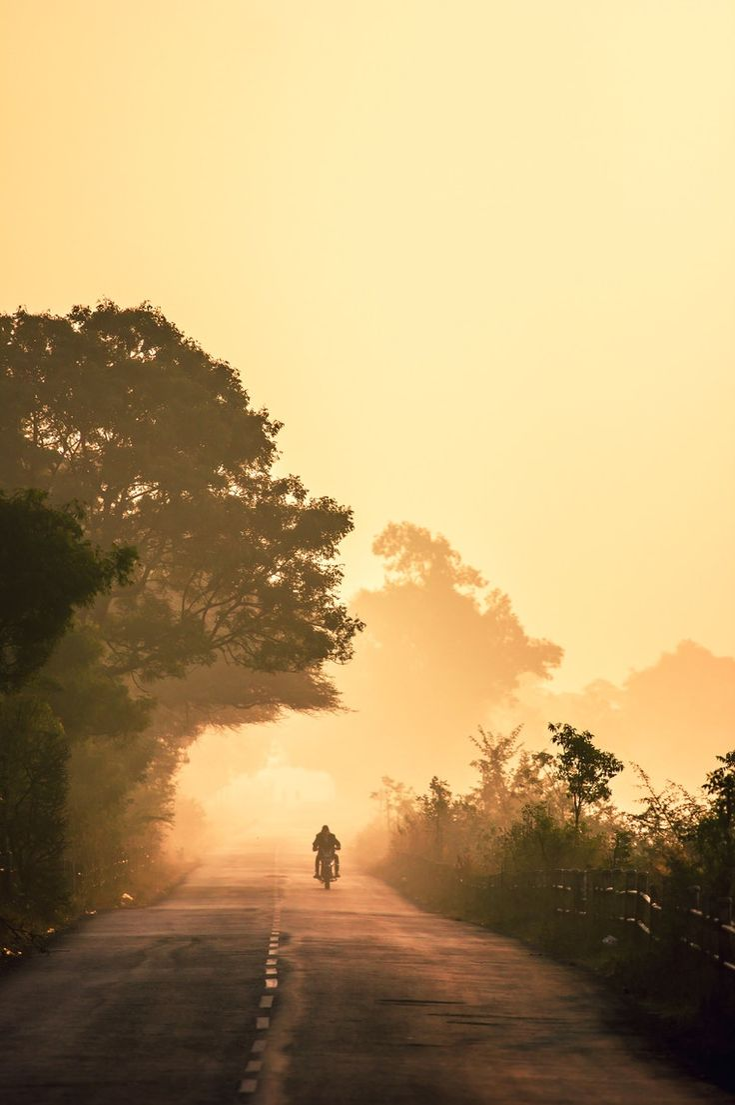 GOOD LIFE & GOOD TASTE: Brumoso paseo matutino