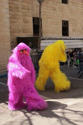Hairy MonStars, monster costume, purim costume, halloween, street performance. by HelenBudniatsky on Etsy https://www.etsy.com/uk/listing/475024124/hairy-monstars-monster-costume-purim