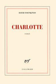 David Foenkinos  Charlotte  Gallimard Roman (2014)