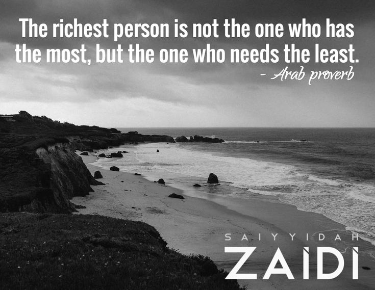 The richest person is not the one who has the most, but the one who needs the least.  / - Arab proverb