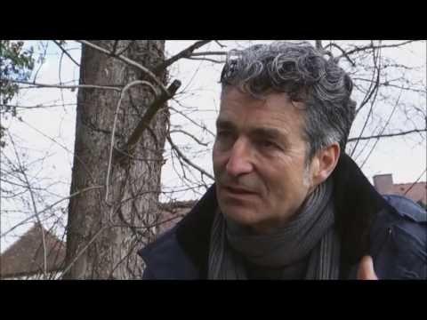 ZDF Mittagsmagazin 17.3.17 Die Waldapotheke Dr. Markus Strauß Löwenzahnsalat - YouTube