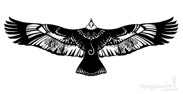 condor inca tattoo - Google Search