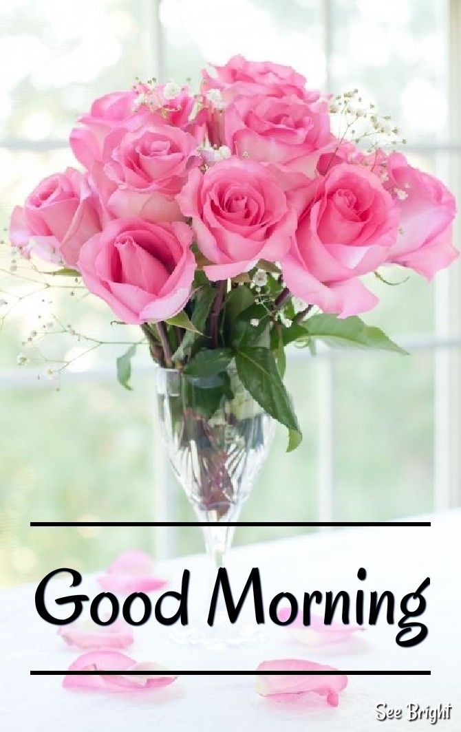 Good Morning My Beautiful And Beloved Princess Have A Beautiful Day I Love You Good Morning Beautiful Quotes Good Morning Love Good Morning Sweetheart Quotes