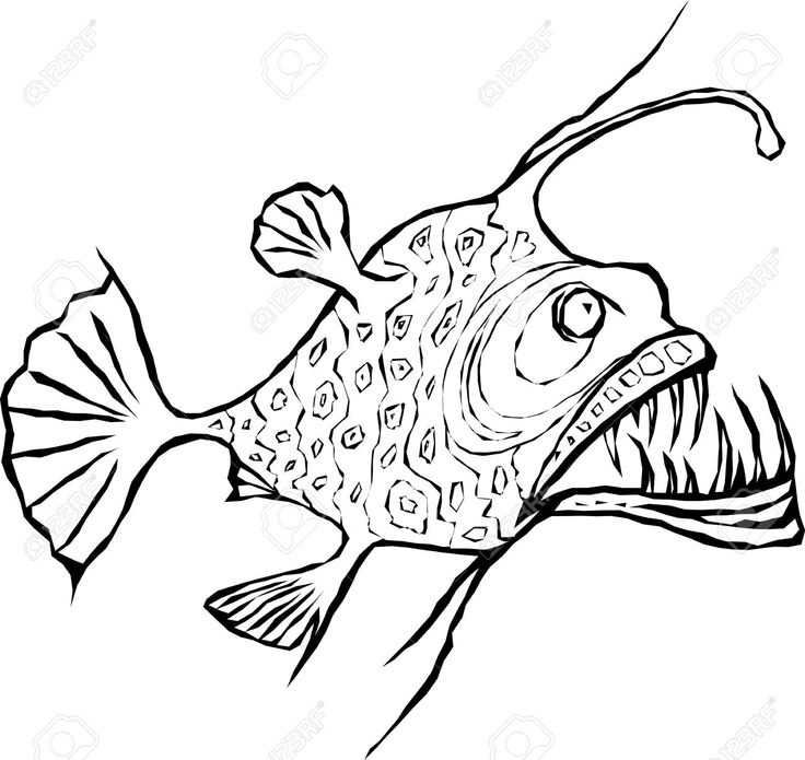 29305190-Angler-fish-design-element-Stock-Vector.jpg (1300×1228)