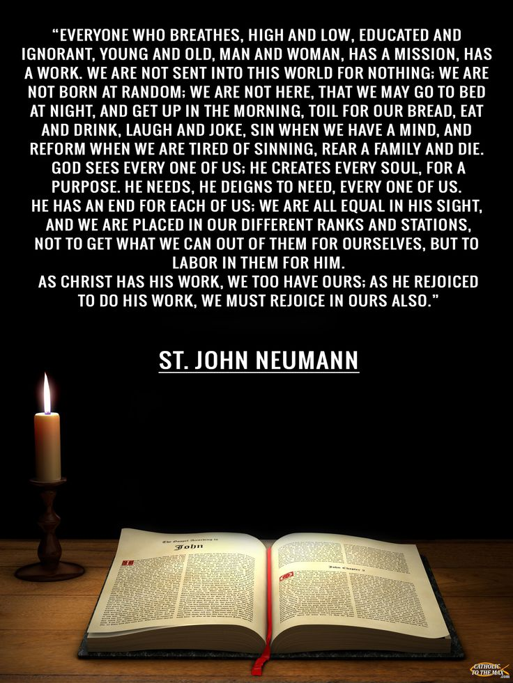Image result for st john neumann images with quotes