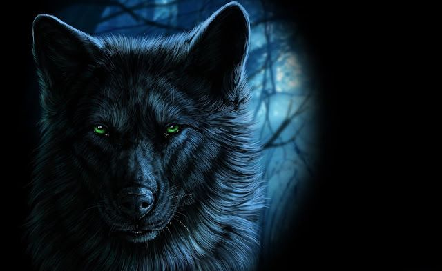 Pin On Shapeshifter Seduction Blog 4k wallpaper for pc wolf