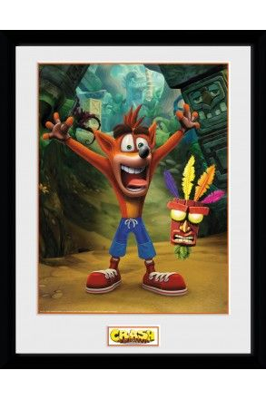 Crash Bandicoot Aku Aku Collector Print