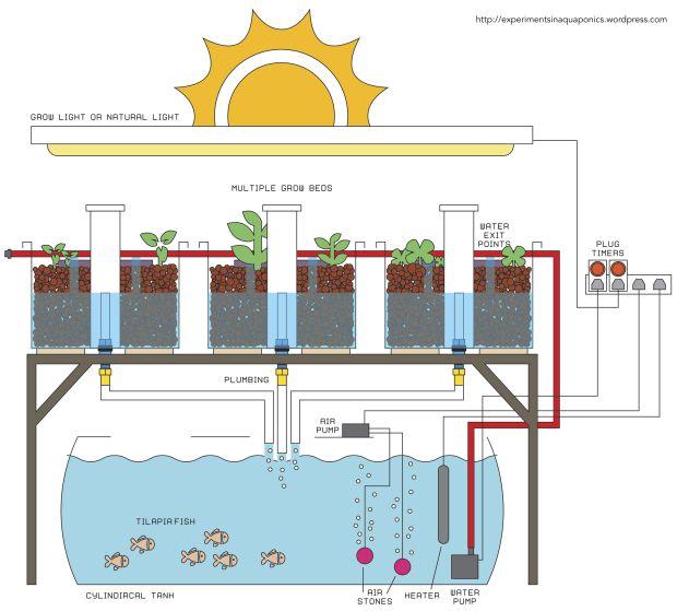 14 best aquaponics images on pinterest | aquaponics ... diagram of aquaponics #15