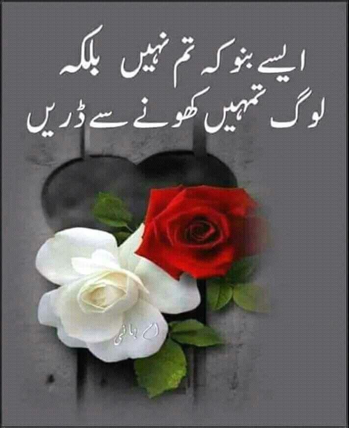 True In Ve Sense Haya Urdu Quotes Islamic Love Quotes Urdu Love Words