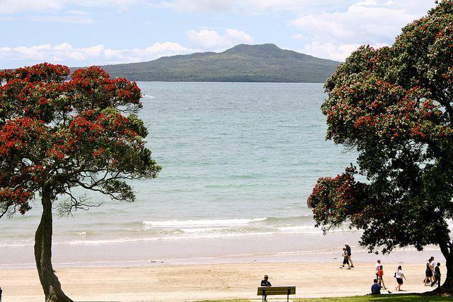 Takapuna Beach, Auckland, NZ. Image: Lisa Rapley.