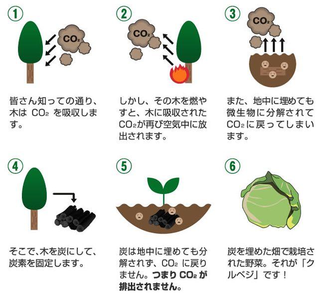 5.クルベジ®紹介 | 亀岡カーボンマイナスプロジェクト