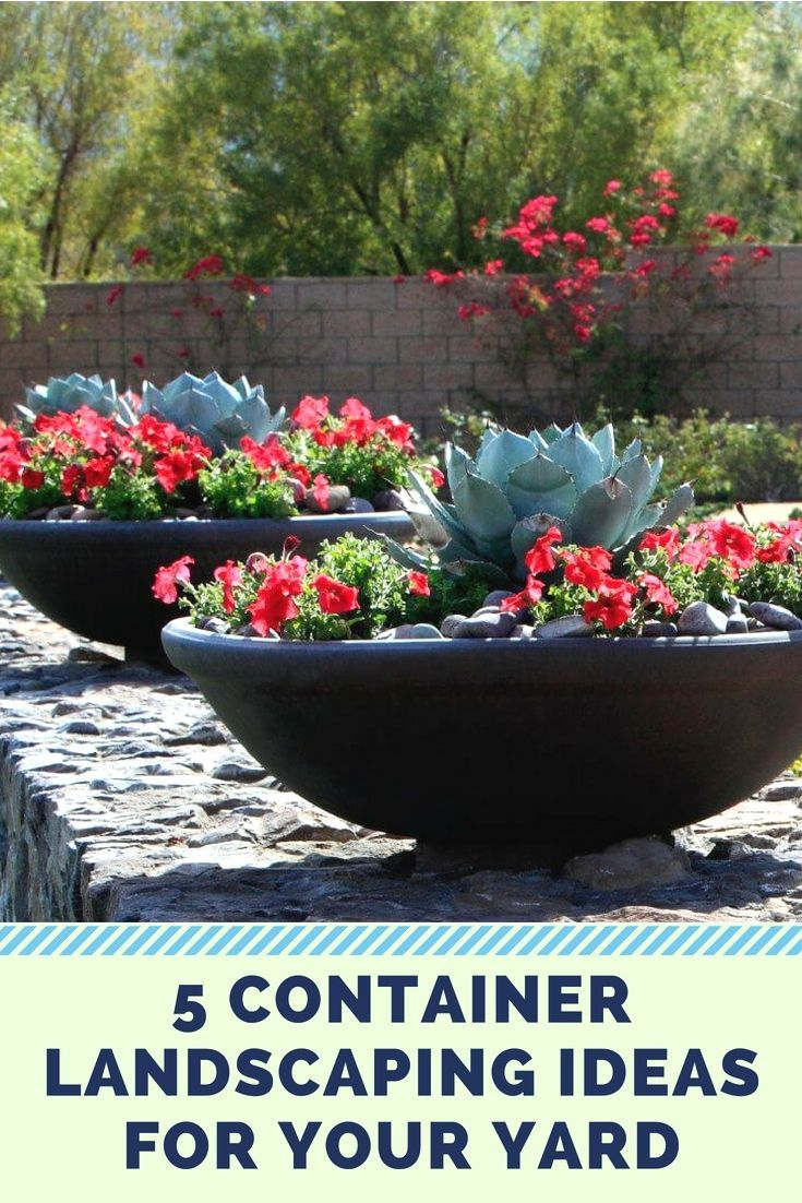 Container Landscaping For A More Unique Look Container Gardening