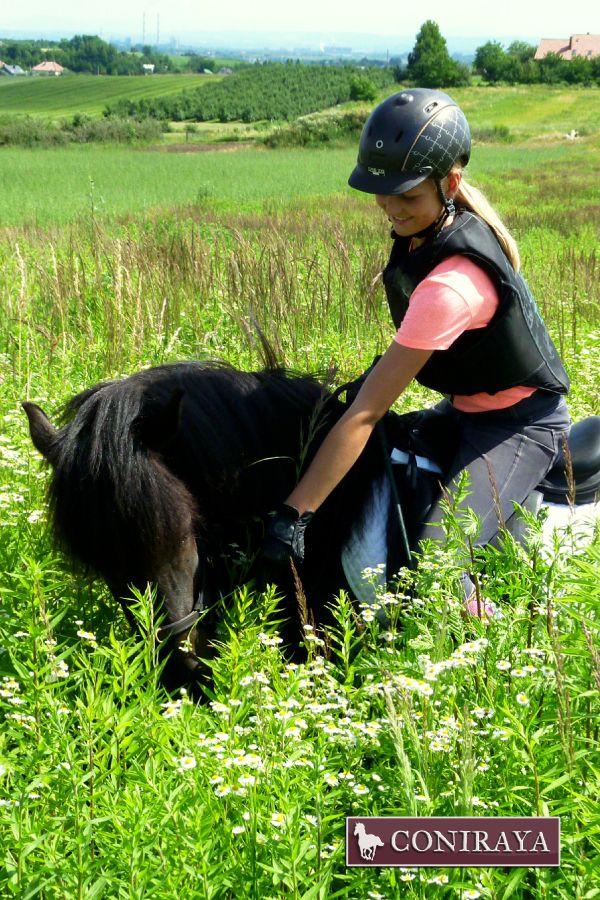 Prawdziwa miłość :) #konie