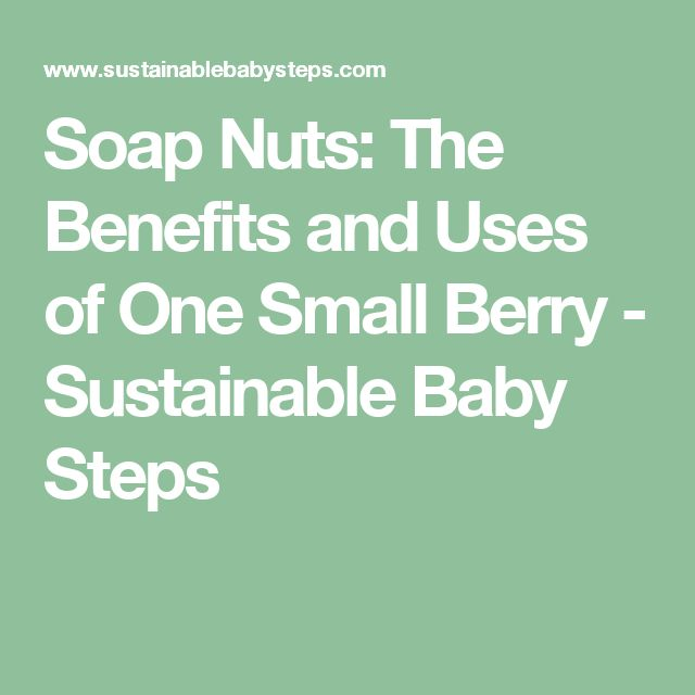 Soap Nuts: The Benefits and Uses of One Small Berry - Sustainable Baby Steps