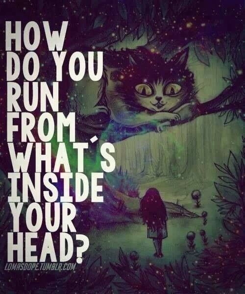 quote, alice in wonderland, and alice image