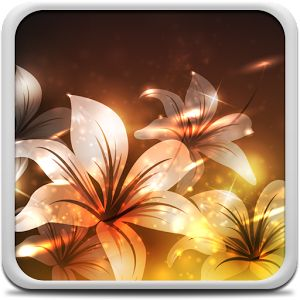 Glowing Flowers Live Wallpaper is the most popular wallpaper for your mobile. These remarkable pictures of heavenly beautiful glowing flowers will show you how insects see. Find favorite flowers & decorate your phone screen with the beautiful pictures of flowers that glow in dark.
