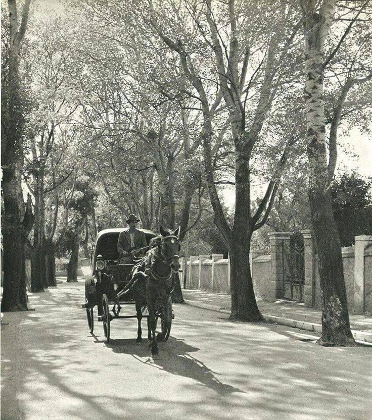 ΑΘΗΝΑ 1930 ΚΗΦΙΣΙΑ ΚΕΦΑΛΑΡΙ. so many memories