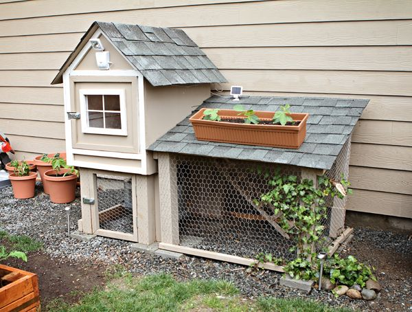 Cute chicken coop.....how about chicken condos! ;)