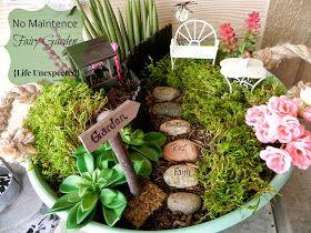 Life Unexpected: No Maintenance Fairy Garden