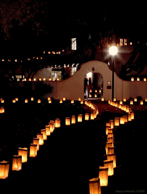 Luminaria walkway. I just love seeing these lights all over ABQ this time of year.