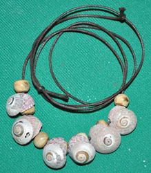 Humans may have been wearing jewelry as far back as 75,000 BP, about   30,000 years earlier than previously thought, if 41 shells found at Blombos Cave   in South Africa prove to have been used as beads.   The shells are from a tiny mollusk, Nassarius kraussianus, that lived in a nearby estuary. They have perforations and wear marks consistent with being used as beads, according to scientists excavating the middle Stone Age site.