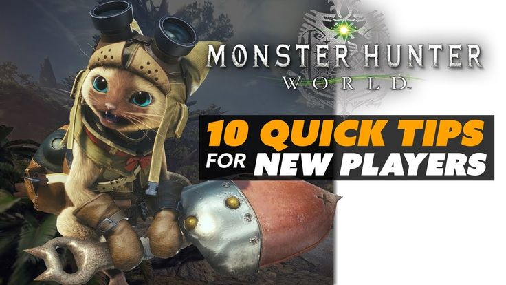 FarCry 5 Gamer  #10 #Quick #Tips for New #Monster #Hunter #World Players! - The Know   Jumping into #Monster #Hunter World? It's dangerous to go alone! Take these #tips to get started on the right foot.  Written By: Brian Gaar Edited By: Kdin Jenzen Hosted By: Ashley Jenkins and Mica Burton  Get More #News ALL THE TIME:    Follow The Know on Twitter:  Follow The Know on Facebook:   Rooster Teeth Store:  Rooster Teeth:   Business Inquiries:   Subscribe to the RT Channel:  Subs