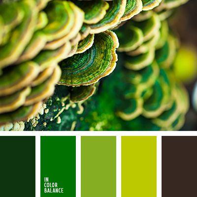 зеленый, коричневый, монохромная зеленая палитра, оттенки зеленого, палитра зеленых оттенков, салатовые оттенки, салатовый, цвет зелени, цвет молодой травы, цвет мха, яркий зеленый, яркий салатовый.