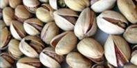 How to Grow a Pistachio Tree From a Seed | eHow.com