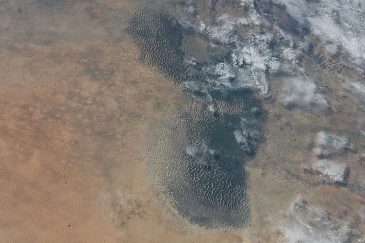 https://flic.kr/p/okrQ2F | Lake Chad (NASA, International Space Station, 07/25/14) | From an altitude of 225 nautical miles, one of the Expedition 40 crew members aboard the International Space Station was looking almost straight down when he photographed this picture of Lake Chad, which is spread over parts of four African nations -- Chad, Niger, Cameroon and Nigeria. A 50mm focal length was used to capture the image.  Image credit: NASA   Original image…