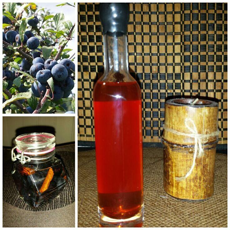 Patxaran (Liqueur de prunelles sauvages)