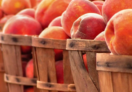 Ontario peaches... Summer+Peaches in Ontario...I want right now..