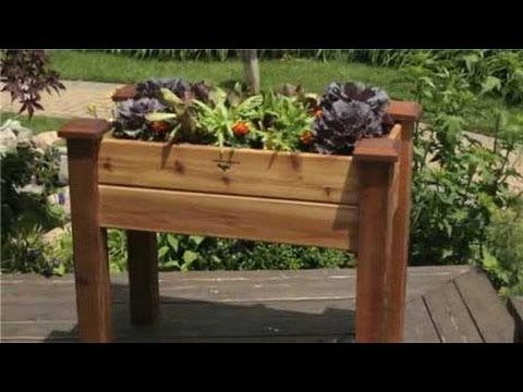 A Brief Guide To Container Gardening – Gardeners Advice