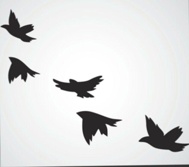 Birds- behind ear or neck