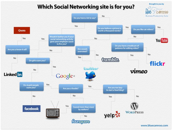 A handy chart to see which Social Network you belong to, from BlueCamroo.