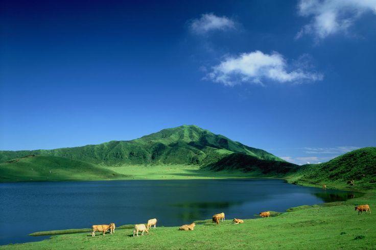 夏の草千里(熊本) 煙を上げる阿蘇山の中岳を望む、絶好のロケーションの草千里。直径1キロメートルの広大な大草原の中央には雨水がたまってできた大きな池があり、牛や馬が放牧されている。四季でまったく異なる景色も見どころだ。